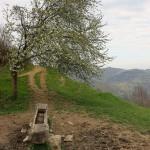 sudul Trascăului în aprilie