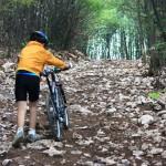 acăsenii pe Muntele Bucerzii